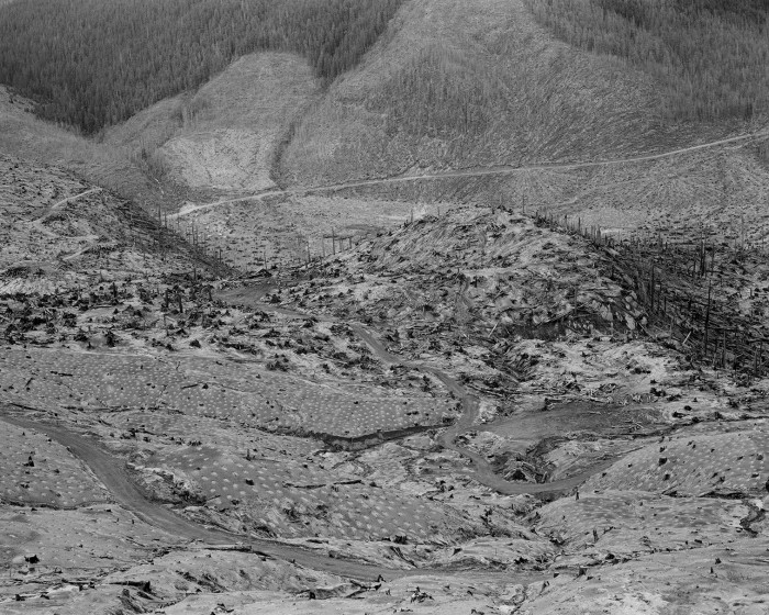 Mount St. Helens 44_019